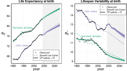 Smooth Constrained Mortality Forecasting