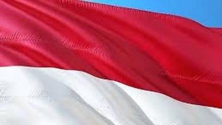 Indonesia's 2020 Covid-19 Population Census