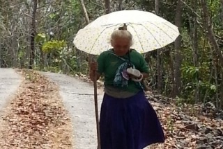 Meeting the needs of older persons in Indonesia